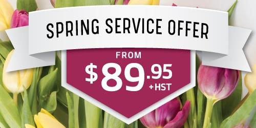 Spring Service Offer