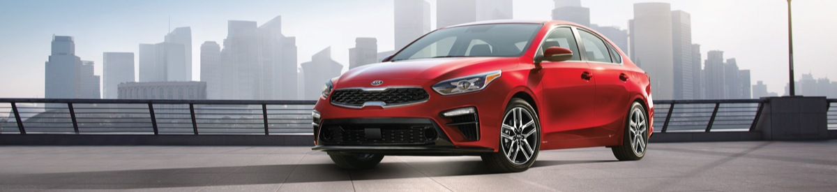 Why's the 2019 Kia Forte Becoming So Popular Mississauga Kia