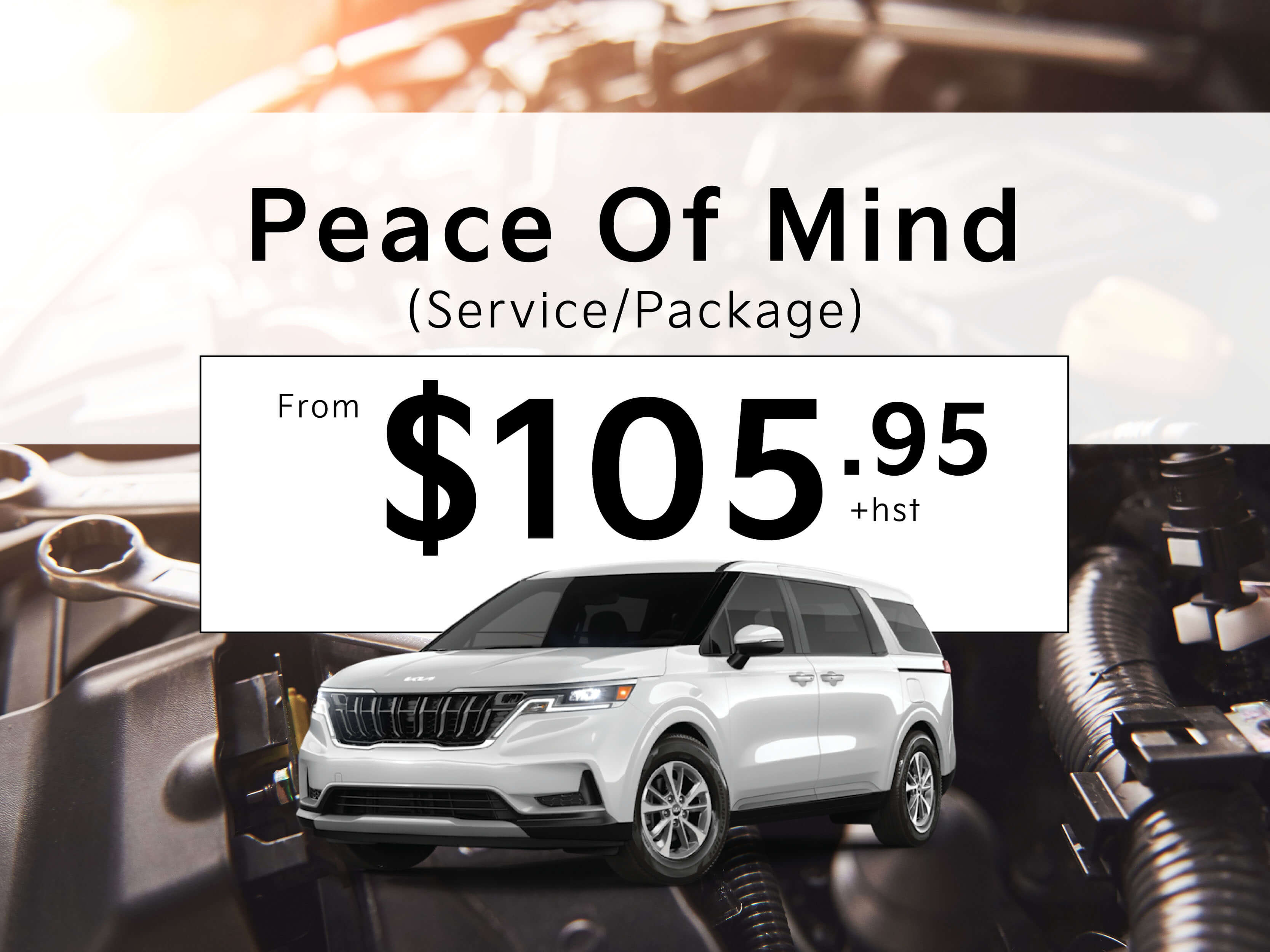 Peace of Mind Service Package